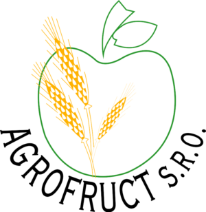 logo_0-300x308